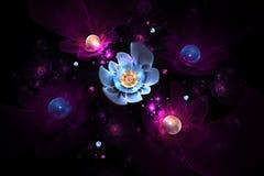 Flores color de rosa que brillan intensamente abstractas en fondo negro Imagen de archivo