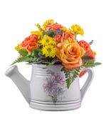 Flores coloreadas vivas, rosas anaranjadas, en una regadera blanca, aislada Fotografía de archivo libre de regalías