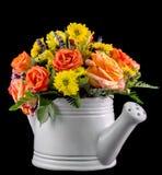 Flores coloreadas vivas, rosas anaranjadas, en una regadera blanca, ascendente aislada, cercano Imagen de archivo libre de regalías