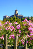 Flores coloridas bonitas e castelo histórico velho no backgrou imagens de stock royalty free