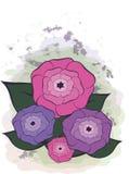Flores coloridas com folhas Fotos de Stock Royalty Free