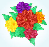 Flores coloridas com folhas ilustração stock
