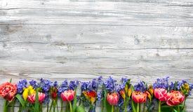 Flores coloridas da mola no fundo do vintage Fotos de Stock Royalty Free