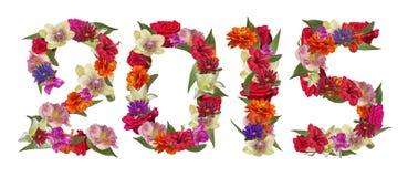 Flores coloridas de la Feliz Año Nuevo 2015 Fotografía de archivo libre de regalías