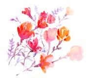 Flores coloridas de las acuarelas Fotografía de archivo