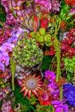 Flores coloridas del fondo foto de archivo libre de regalías