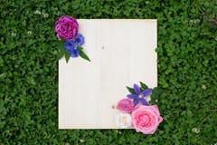 Flores coloridas do verão e placa de madeira na grama verde foto de stock