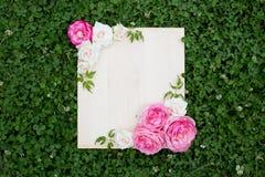 Flores coloridas do verão e placa de madeira na grama verde imagem de stock