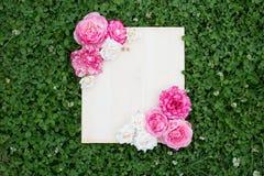 Flores coloridas do verão e placa de madeira na grama verde imagem de stock royalty free