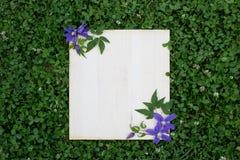 Flores coloridas do verão e placa de madeira na grama verde fotos de stock
