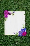 Flores coloridas do verão e placa de madeira na grama verde fotografia de stock royalty free