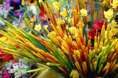 Flores coloridas e outras plantas fotografia de stock