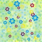 Flores em fundos coloridos Fotografia de Stock