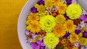 Flores coloridas em uma bacia com água, conceito da terapia dos termas fotografia de stock