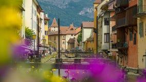 Flores coloridas en el canal y las montañas de Annecy en el horizonte fotos de archivo