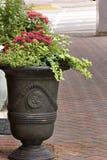 Flores coloridas en la acera de la ciudad Imágenes de archivo libres de regalías