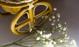 Flores coloridas en la bicicleta blanca, filtro retro Fotografía de archivo