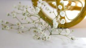 Flores coloridas en la bicicleta blanca, filtro retro Foto de archivo