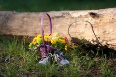 Flores coloridas fora com as sapatas na grama Imagens de Stock