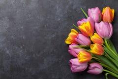 Flores coloridas frescas da tulipa fotografia de stock royalty free