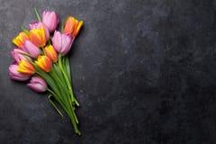 Flores coloridas frescas da tulipa fotografia de stock