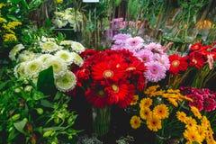Flores coloridas na frio-caixa no mercado da flor Fotografia de Stock