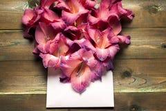 Flores coloridas no envelope, conceito da entrega da flor felicite imagens de stock royalty free