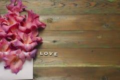 Flores coloridas no envelope, conceito da entrega da flor felicite imagem de stock