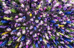 Flores coloridas no teto foto de stock royalty free