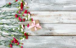 Flores coloridas y regalo del clavel que forman la frontera izquierda en blanco Foto de archivo