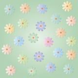 Flores coloridos em uma luz - fundo verde Imagem de Stock Royalty Free