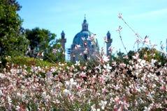 Flores com a abóbada clássica no fundo. Foto de Stock
