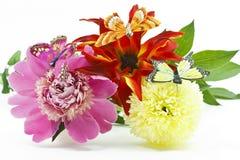 Flores com borboletas Fotos de Stock