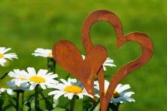 Flores com corações Imagens de Stock