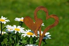 Flores com corações Fotos de Stock