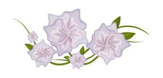 Flores com elemento decorativo da flor ilustração royalty free