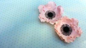 Flores comestibles hechas a mano de la anémona fotos de archivo libres de regalías