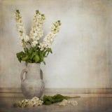 Flores comunes blancas poner crema en un florero poner crema en un estilo del vintage SP imágenes de archivo libres de regalías