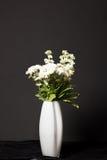Flores con el fondo negro Fotografía de archivo