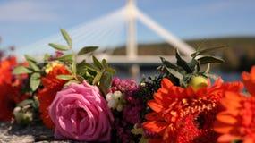 Flores con el puente de Rovaniemi en el fondo Fotos de archivo