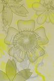 Flores con gradiente Imagen de archivo libre de regalías