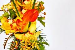 Flores con la cala Imagen de archivo libre de regalías