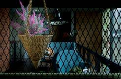 Flores con la cerca de acero de la malla de alambre fotos de archivo libres de regalías
