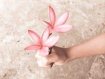 Flores con la mano Fotos de archivo