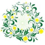 Flores con la telaraña, abstracción Fotos de archivo libres de regalías