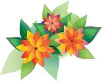 Flores con las hojas de asteres Foto de archivo libre de regalías
