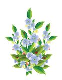Flores con las mariquitas Imágenes de archivo libres de regalías