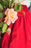 Flores con un cierre del vestido para arriba Foto de archivo libre de regalías