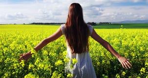 Flores conmovedoras de la mujer mientras que camina en campo almacen de video
