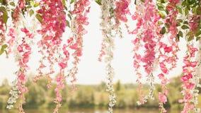 Flores contra el contexto del río Las flores delicadas cuelgan abajo metrajes